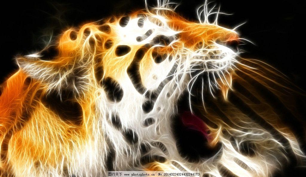 老虎 咆哮 虎头 光线图 唯美 凶狠 凶残 霸气 侧脸 野生动物 生物世界