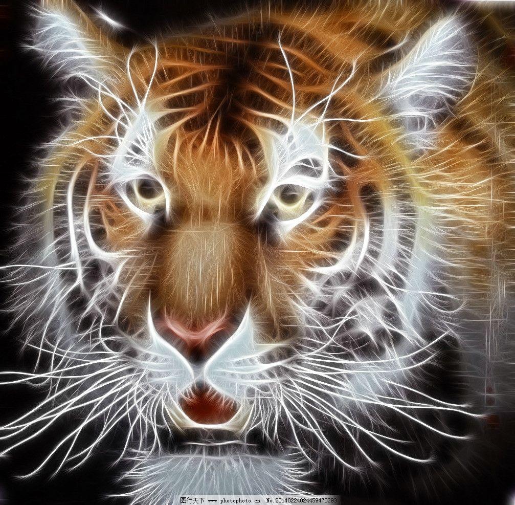 世界咆哮动物照片