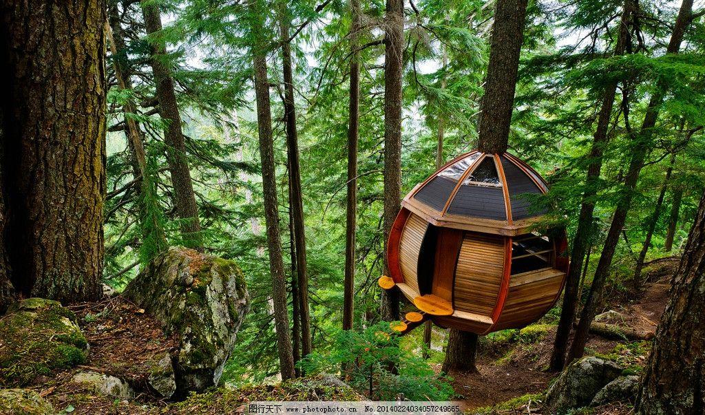 森林小木屋图片