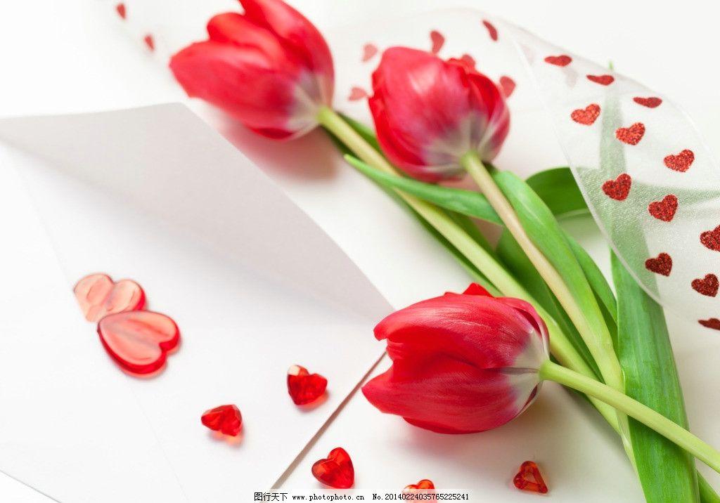 郁金香 妇女节 鲜花 花朵 花卉 唯美花朵 心形 爱心 三八节 节日鲜花