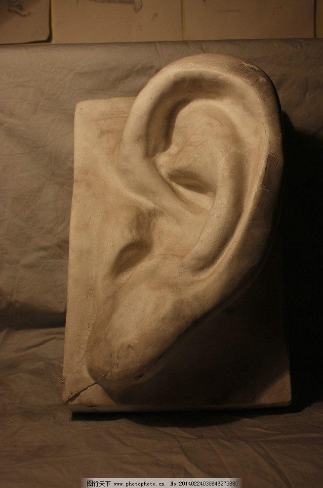 耳朵 石膏像 美术 素描 五官 绘画 雕塑 建筑园林 摄影 72dpi jpg