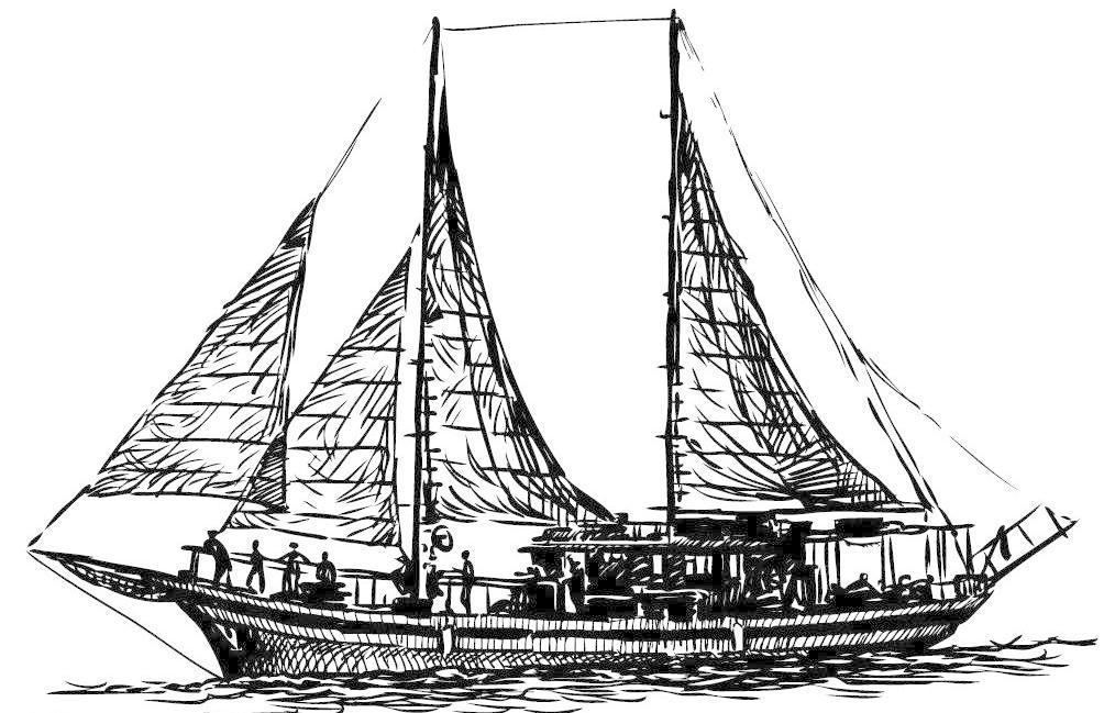 ai eps 船 帆 帆船 交通工具 手绘 现代科技 游船 游艇 帆船矢量素材