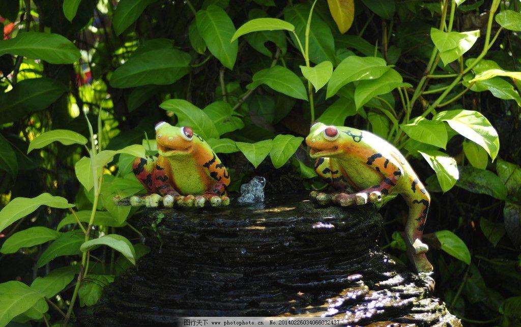 泰国植物园 泰国 芭提雅 普吉岛 老虎 热带 兰花 摄影爱好者 旅游摄影