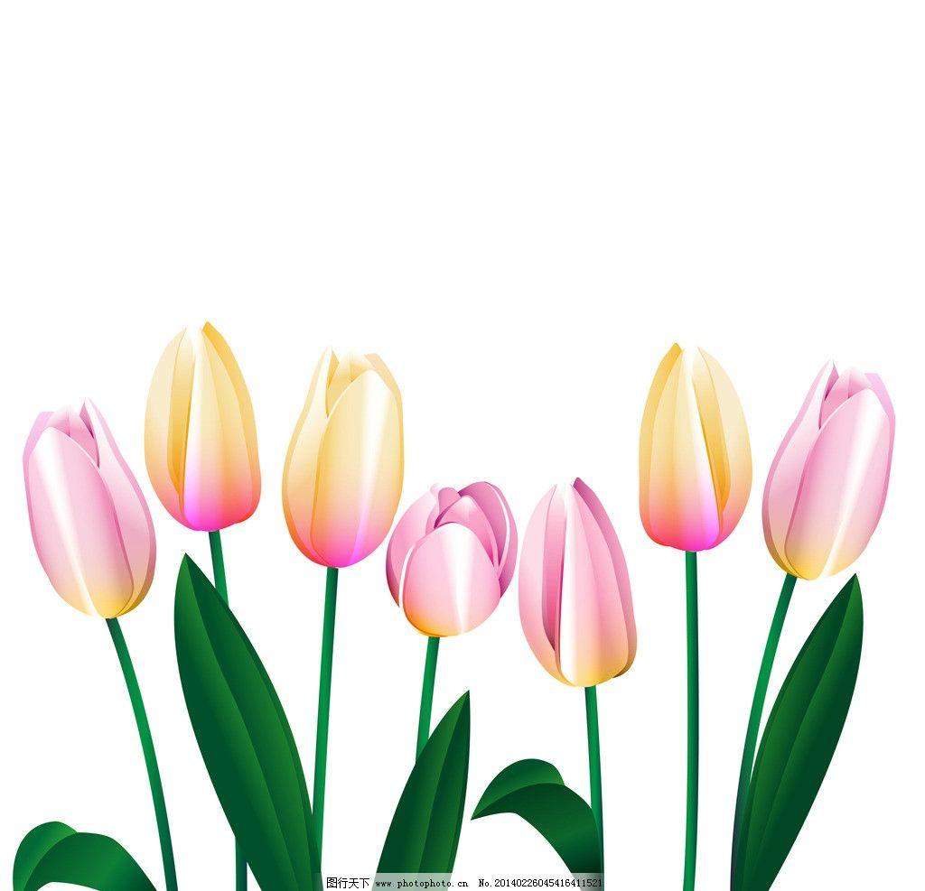 手绘花卉 花卉 绿叶 百合花 花纹花卉 鲜花 花草背景 花草 生物世界