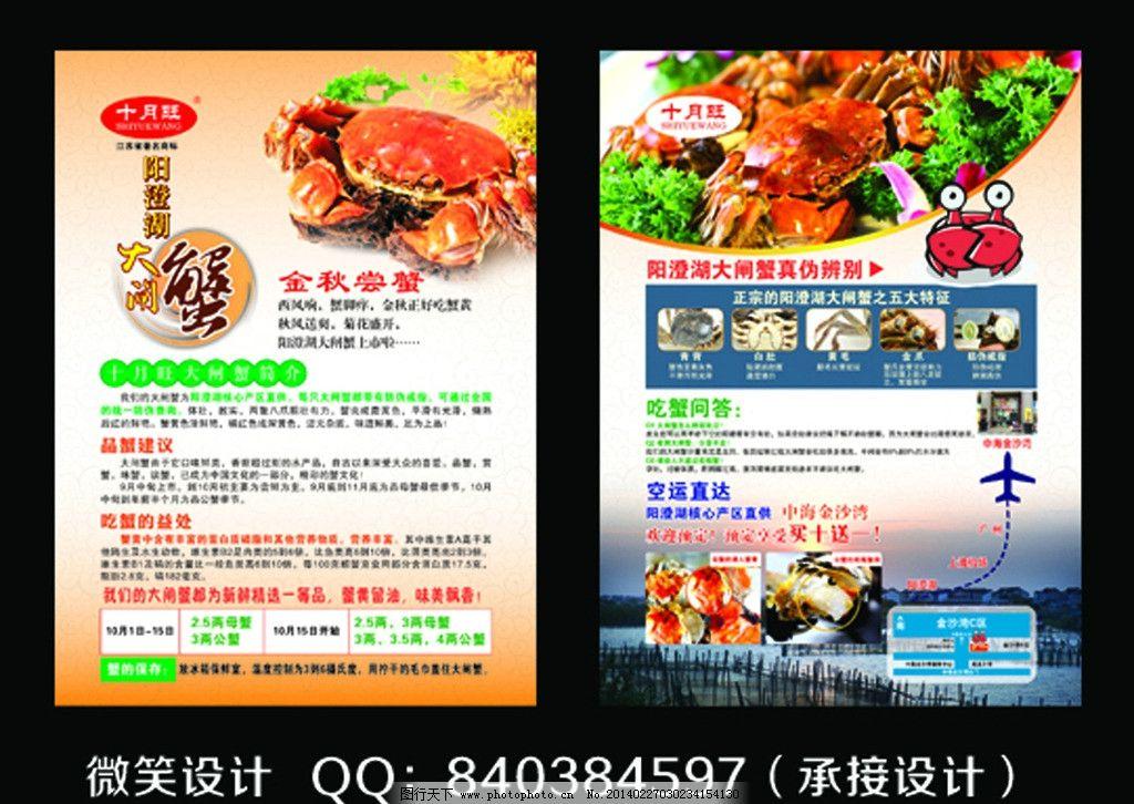 大闸蟹海报图片_展板模板_广告设计_图行天下图库