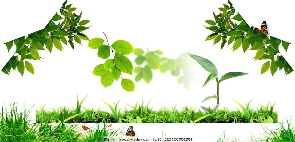 各种树叶 叶子 绿色叶子 树叶背景 一片树叶 树枝 花纹花边 一串树叶
