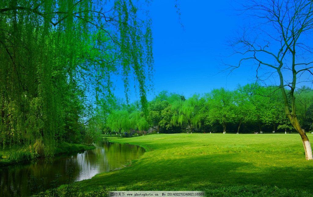西湖美景图片