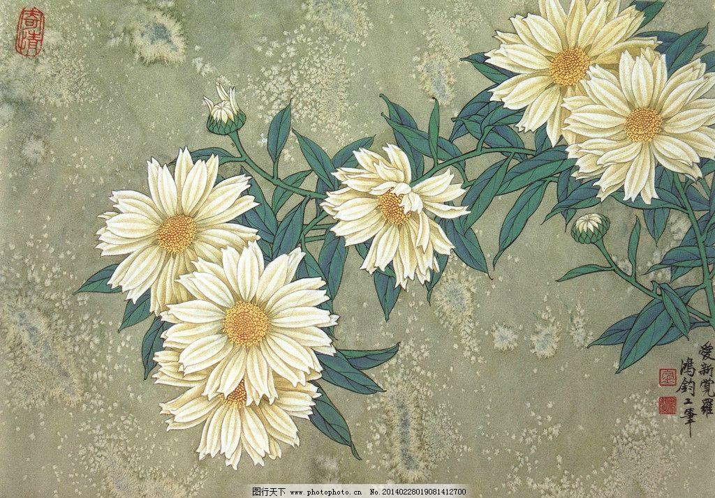 中国画 工笔画 花卉 花木 花朵 白菊花 金鸿钧国画 金鸿钧工笔画作品