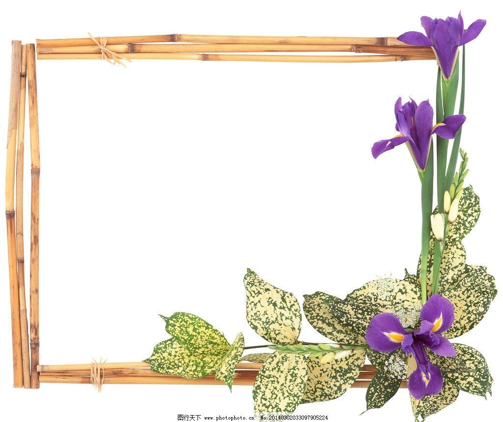 边框(背景分层) 边框 图框 画框 相框 创意 鲜花 鸢尾花 爱丽丝 自然 花朵 花 花瓣 花蕊 花卉 怒放 花卉系列 春天 花草 生物世界 摄影 背景分层 PSD分层素材 源文件 299DPI PSD