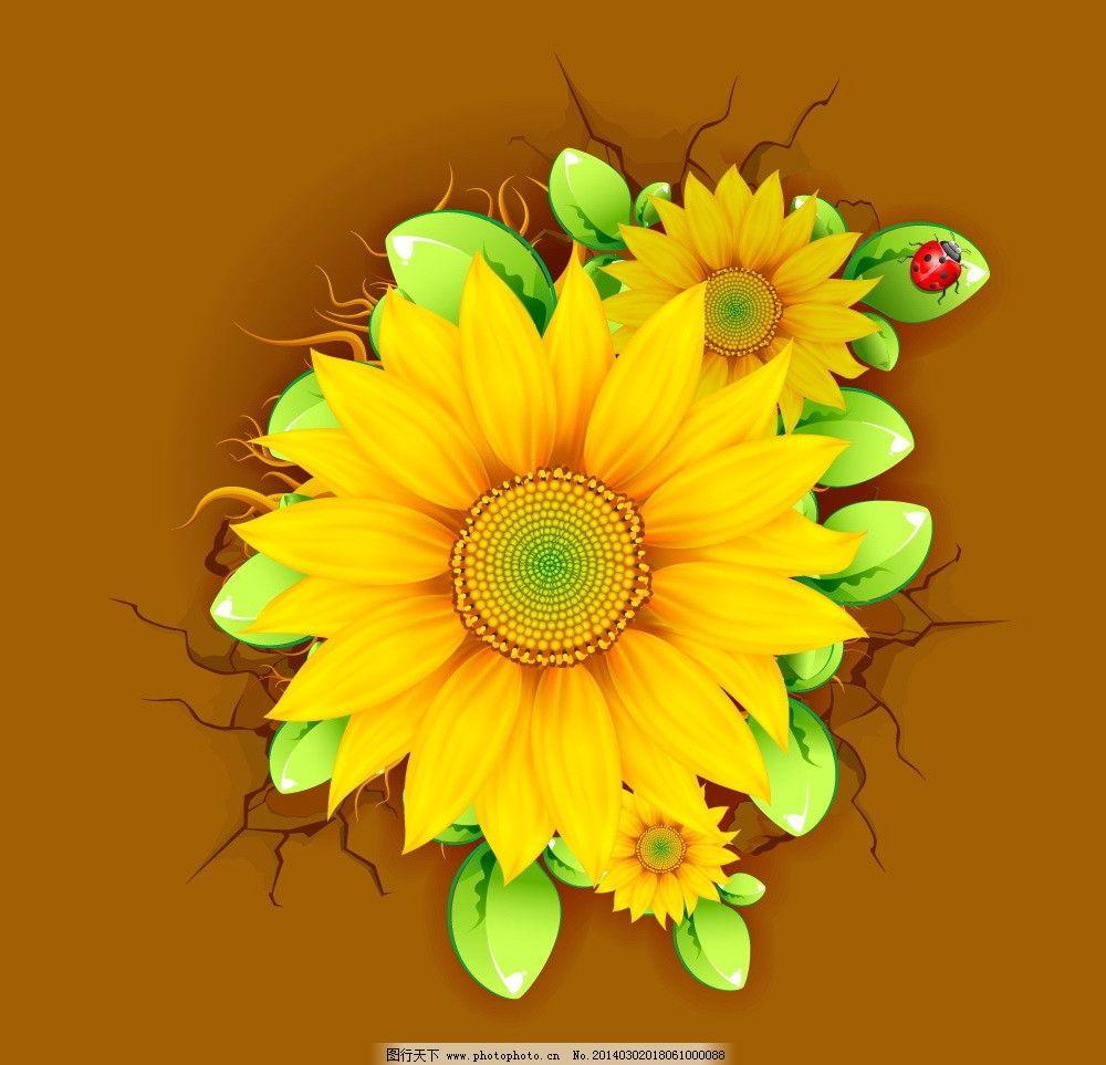 手绘花卉 花卉 花纹花卉 鲜花 绿叶 向日葵 花草背景 花草 生物世界