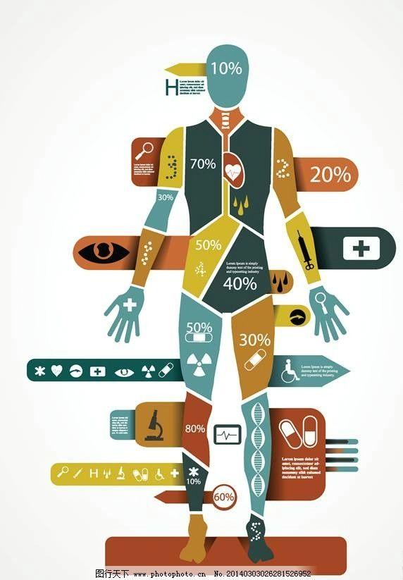人体结构图 人体结构 骨骼图 人体 医疗 医学 医疗设计 医学设计 医院