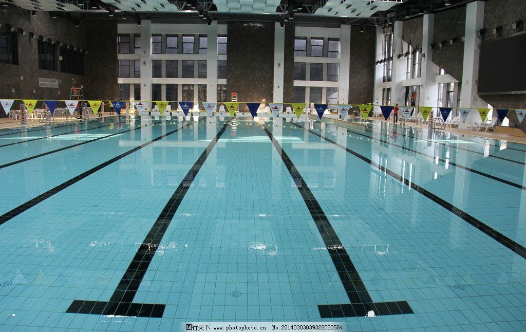游泳馆图片 游泳 泳池 水质 比赛 泳道 室内摄影 建筑园林 摄影 72dpi