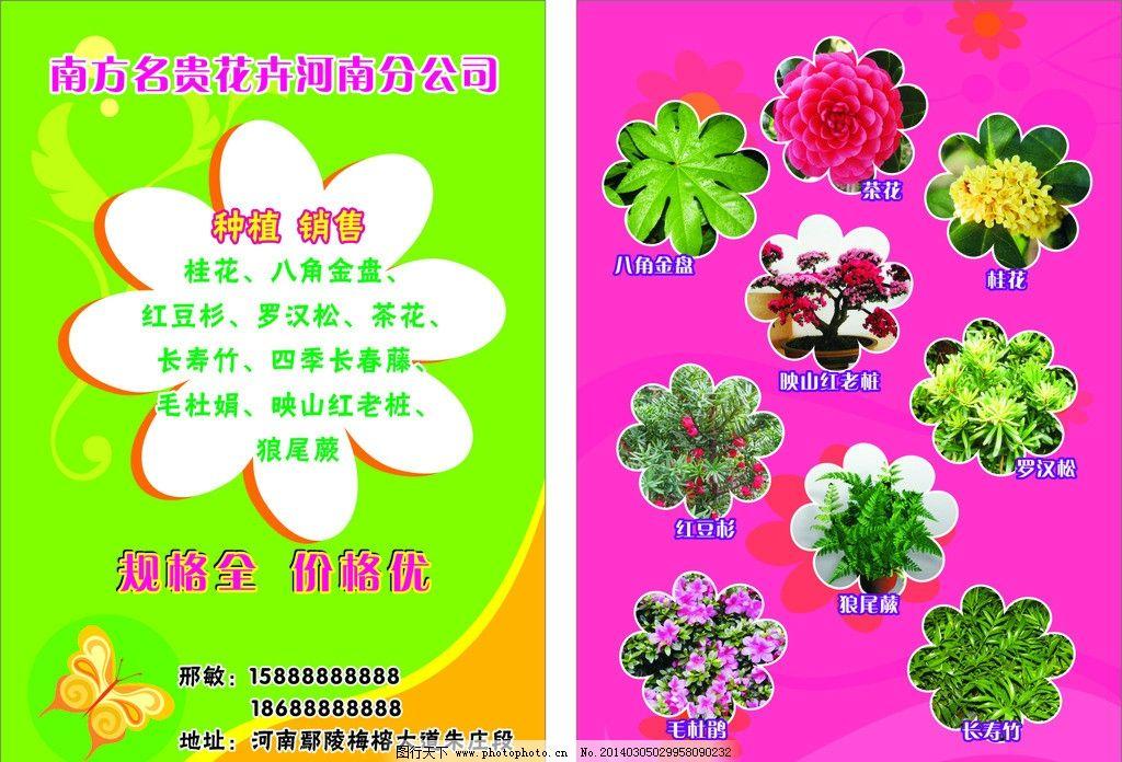花卉卡片 花卉 树木 花树 树园 卡片 宣传 名片卡片 广告设计 矢量