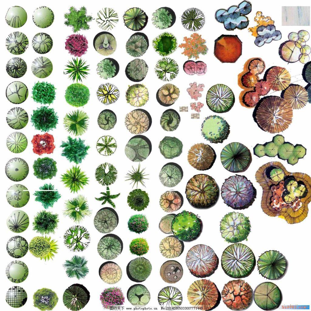 ps植物手绘素材 平彩植物素材