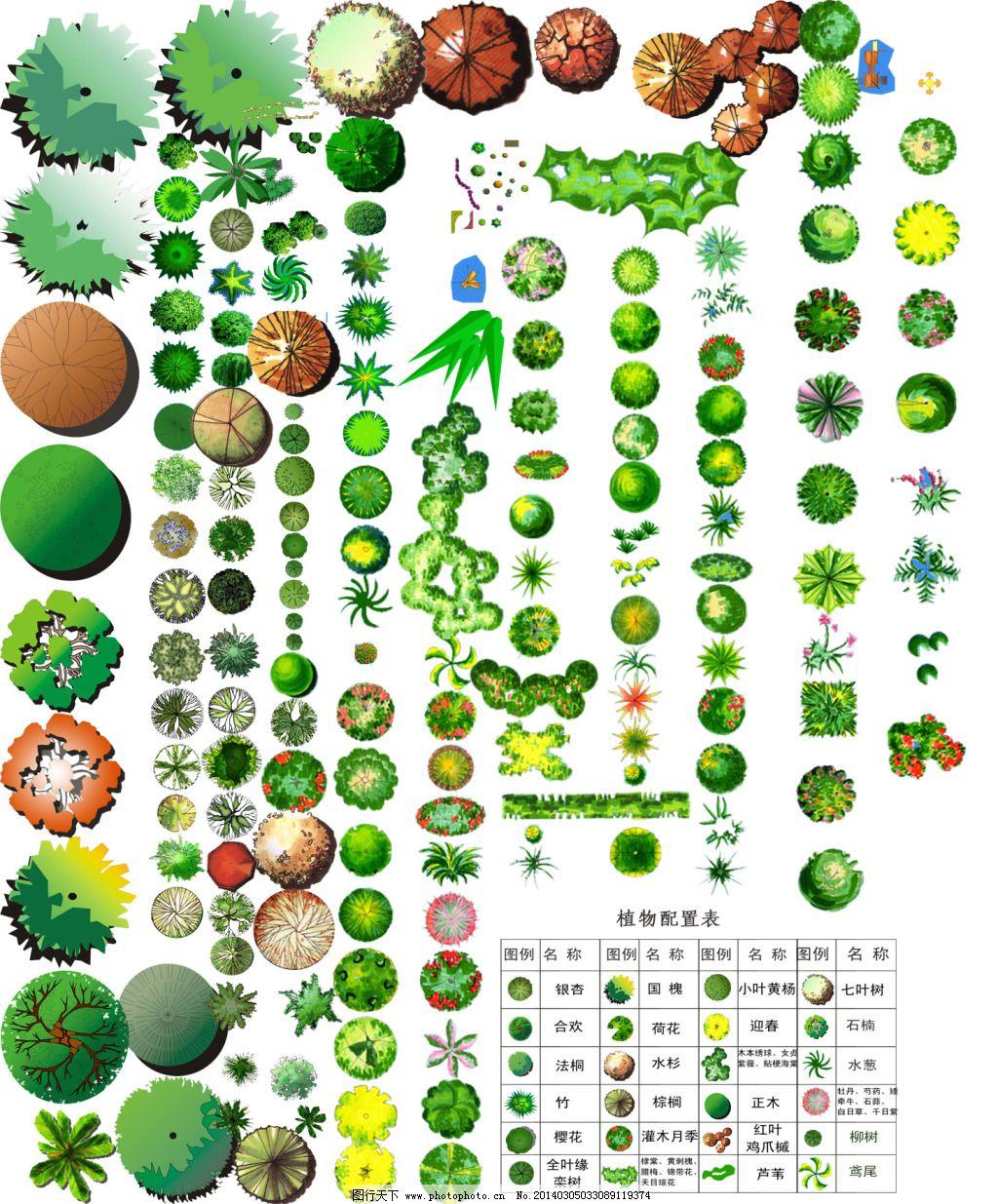 高清素材 植物手绘 植物手绘 平彩图植物素材 高清素材 马克笔植物