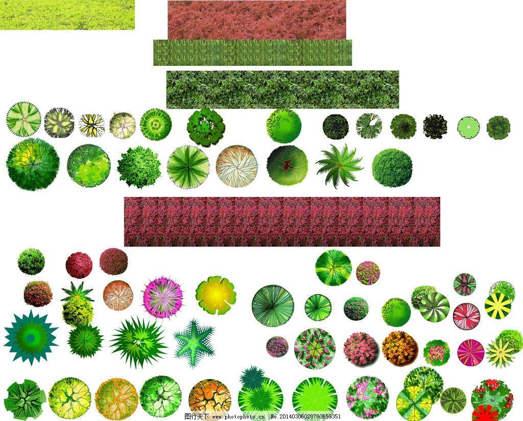 植物平面 植物 汇总 园林 树木 平面图 园林设计 环境设计 源文件 300