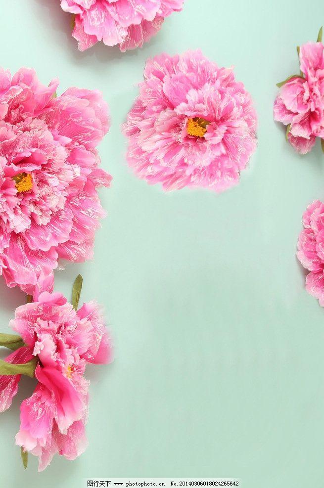 粉色鲜花背景图片