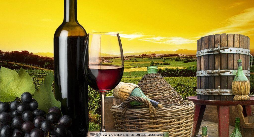 红酒 葡萄 酒桶