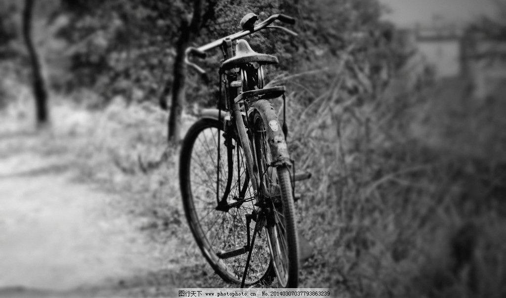 自行车 乡村 小道 路边 老式自信车 黑白 生活艺术 其他 生活百科