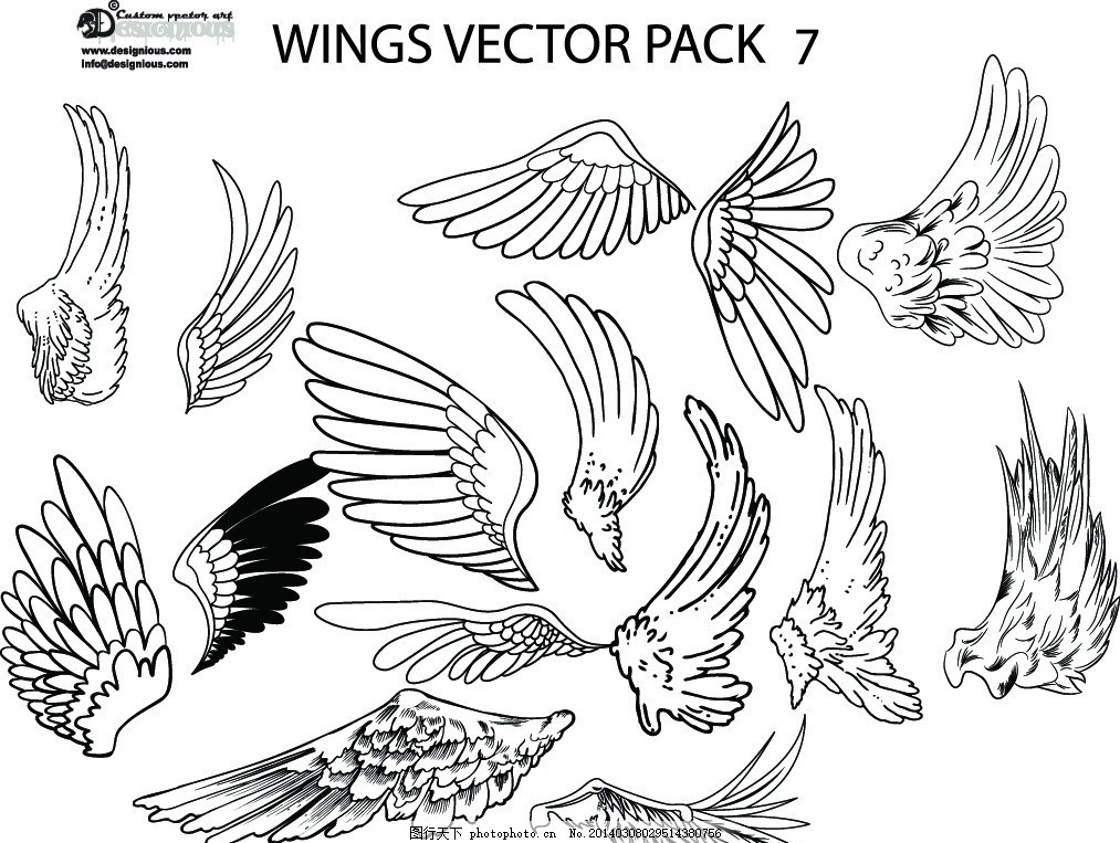 翅膀 羽毛 天使翅膀 翅膀设计 翅膀素材 装饰翅膀 鸟类翅膀 鸟儿翅膀