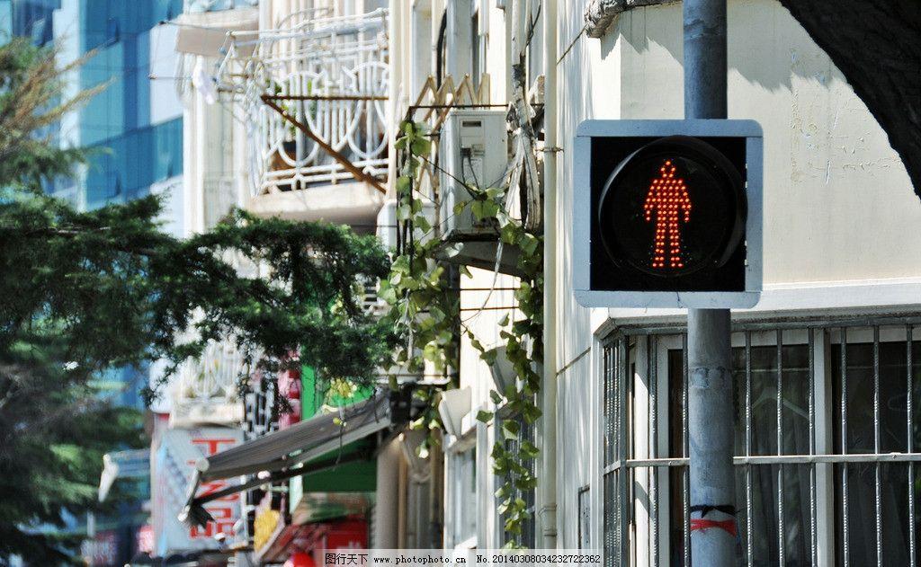 青岛路边 街道 风景 红绿灯 夏天 人文景观 旅游摄影