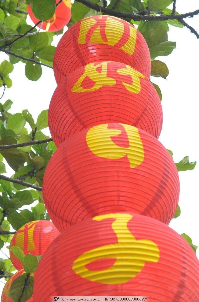 红灯笼图片_树木树叶_生物世界_图行天下图库