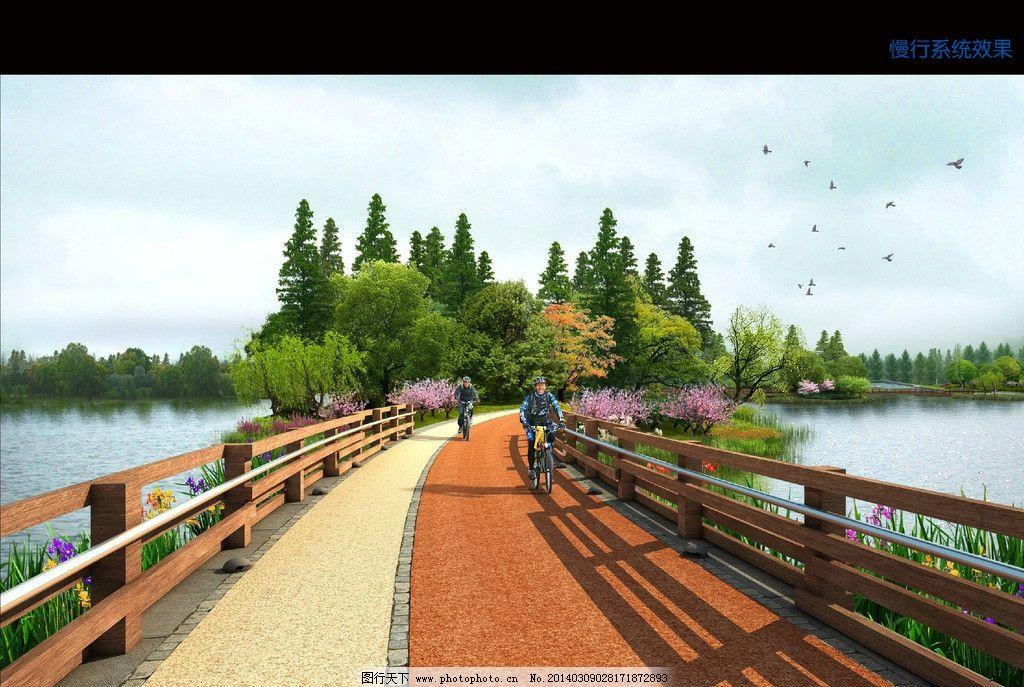 湿地栈道效果图 湿地 栈道 水杉 亲水 滨水 景观        景观设计