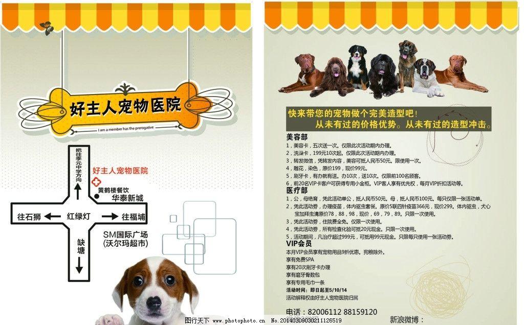 宠物宣传单图片
