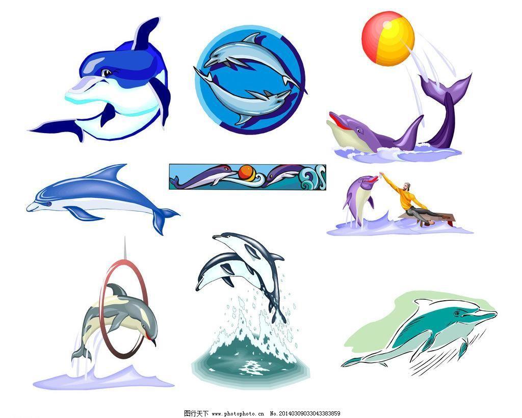 海豚模板下载 海豚 海洋精灵 水海豚表演 各种海豚 卡通 儿童 卡通画