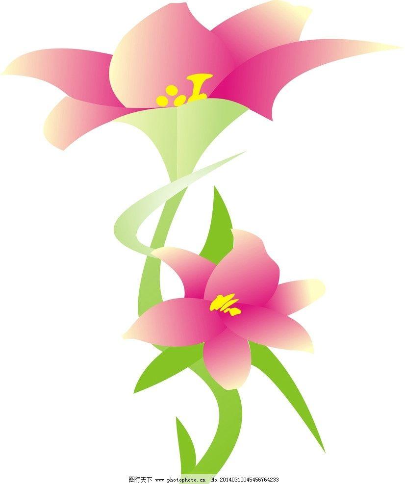 百合花图片