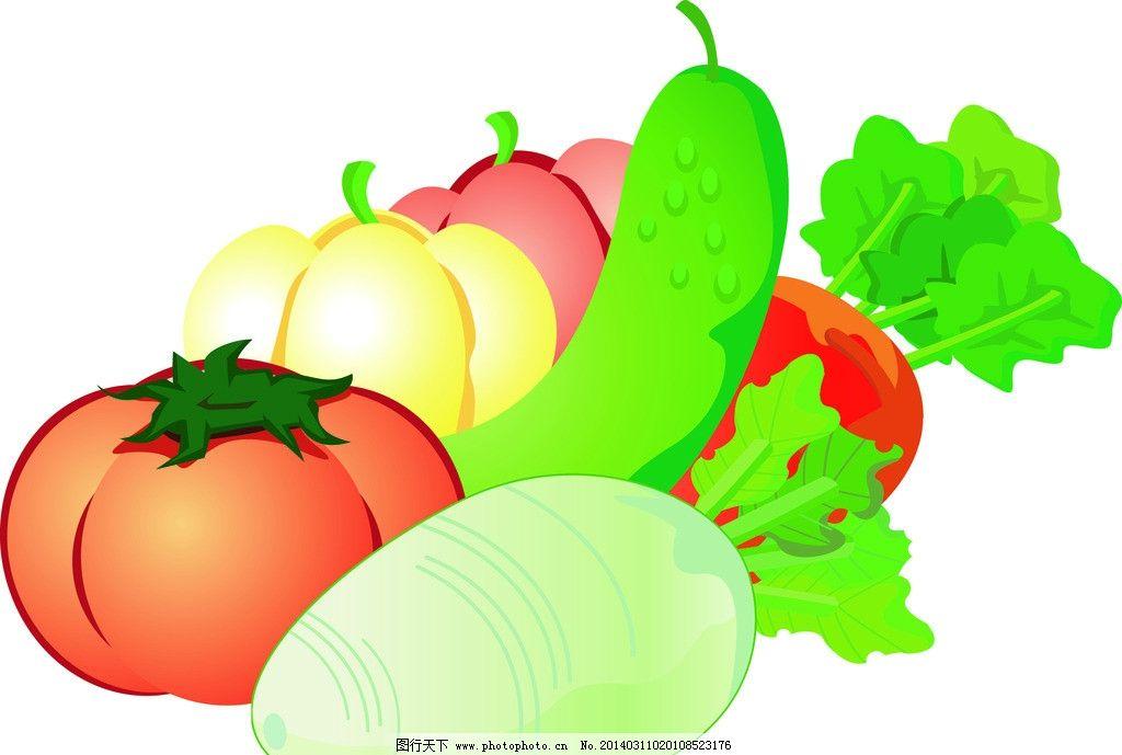 辣椒 萝卜 包菜 蔬菜 大蒜 葱 胡萝卜 青菜 卷心菜 生菜 新鲜蔬菜