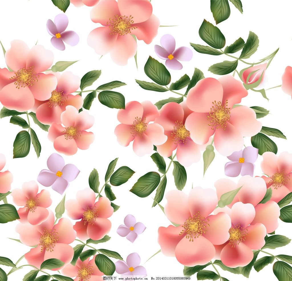 手绘花卉 春天 梦幻花卉 植物花纹 春季 花纹花卉 鲜花 花草背景