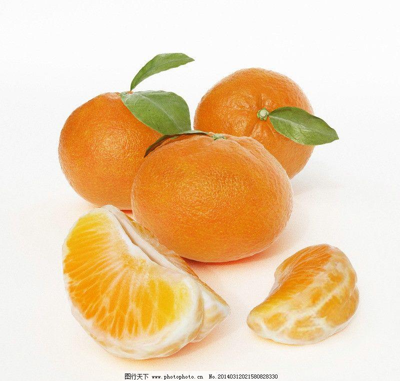 桔子三维模型 大力王 大黄鸡卵 酸桐子 白树仔 山竹子 橘子 柑子