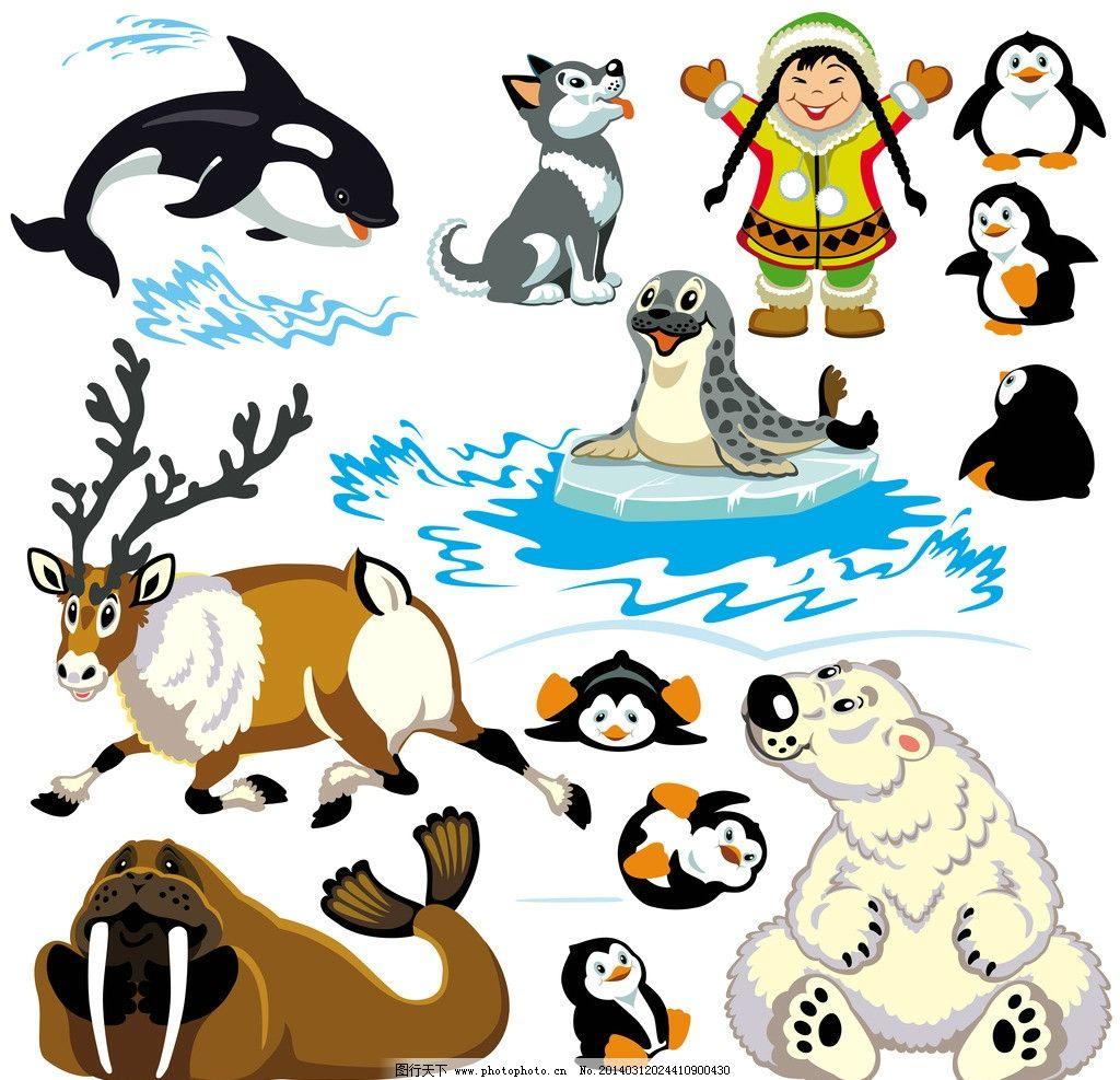卡通动物 企鹅 鲸鱼 北极熊