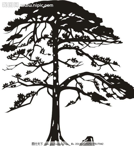 松树素描教程铅笔画