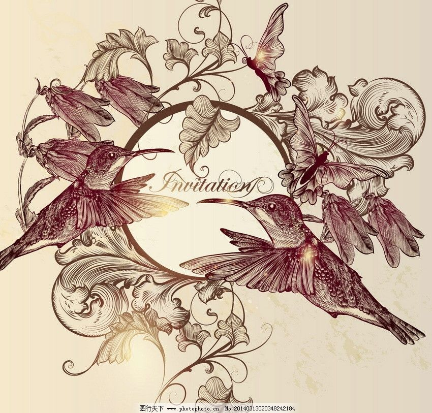 手绘小鸟花朵图片_花边花纹_底纹边框_图行天下图库