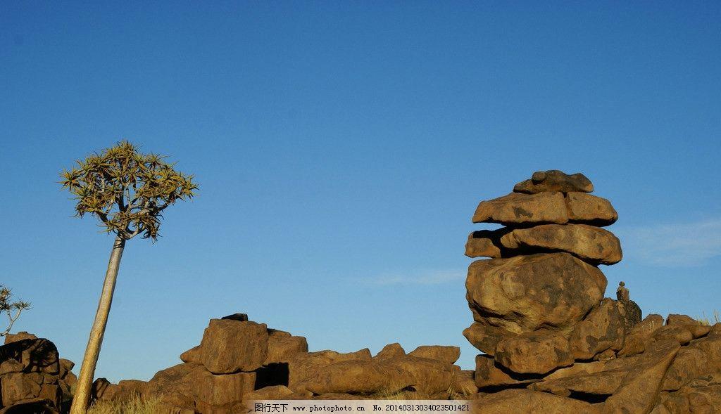 设计图库 自然景观 旅游摄影  戈壁 非洲 特写 蓝天 白云 枯草 树