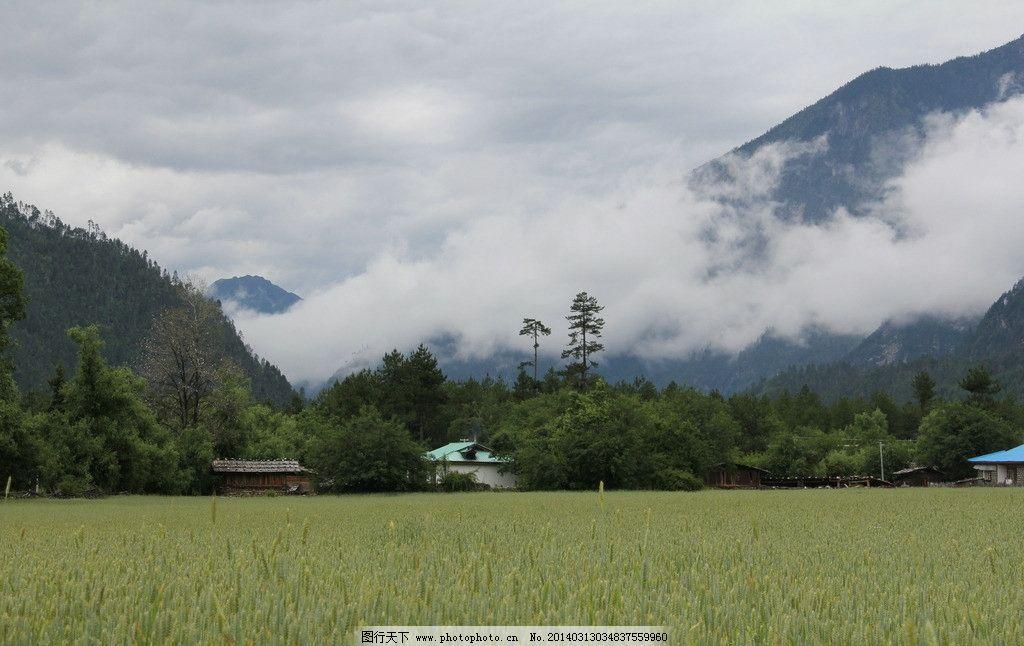 云雾缭绕 西藏 风景图片