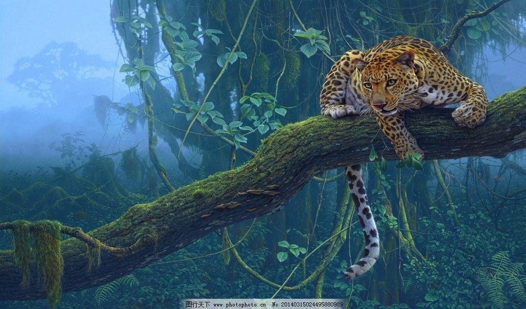 林中豹 豹子 斑纹 森林 匍匐 豹尾 树枝 野生动物 生物世界 设计 72dp