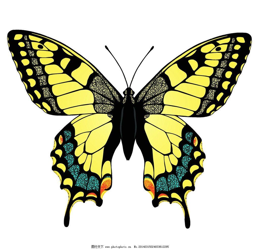 蝴蝶 手绘蝴蝶 昆虫 漂亮 蝴蝶矢量 花纹 手绘 蝴蝶花纹矢量 底纹背景