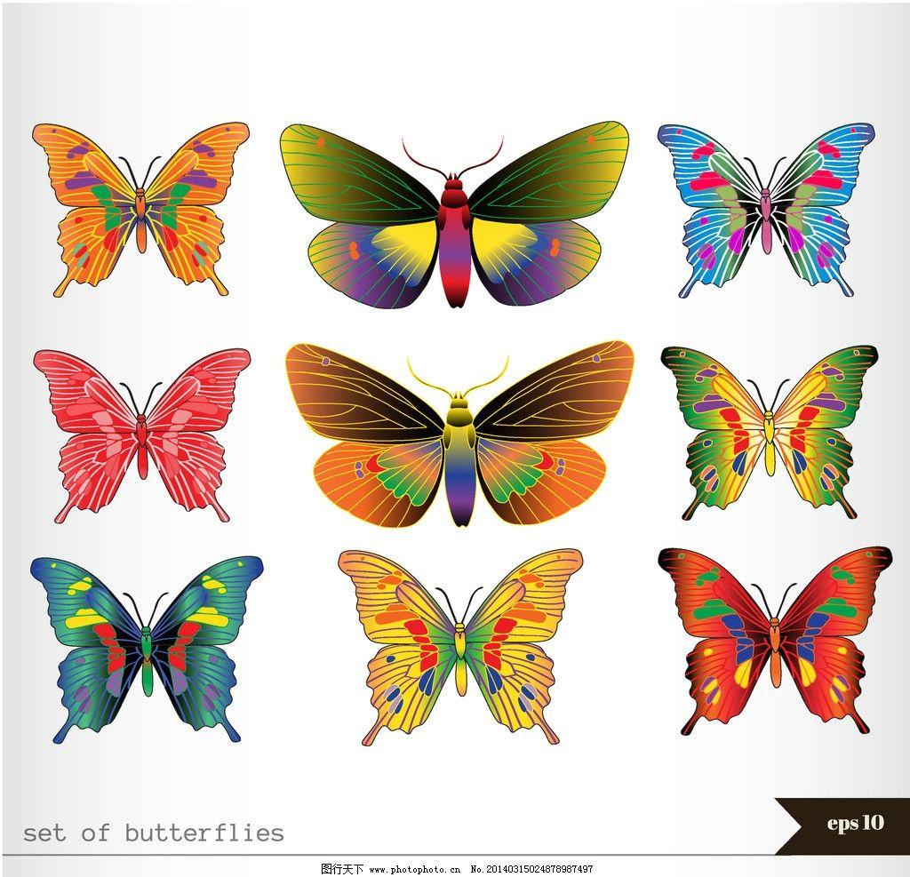 蝴蝶 手绘蝴蝶 昆虫 漂亮 蝴蝶矢量 手绘 蝴蝶花纹矢量 底纹背景 矢量