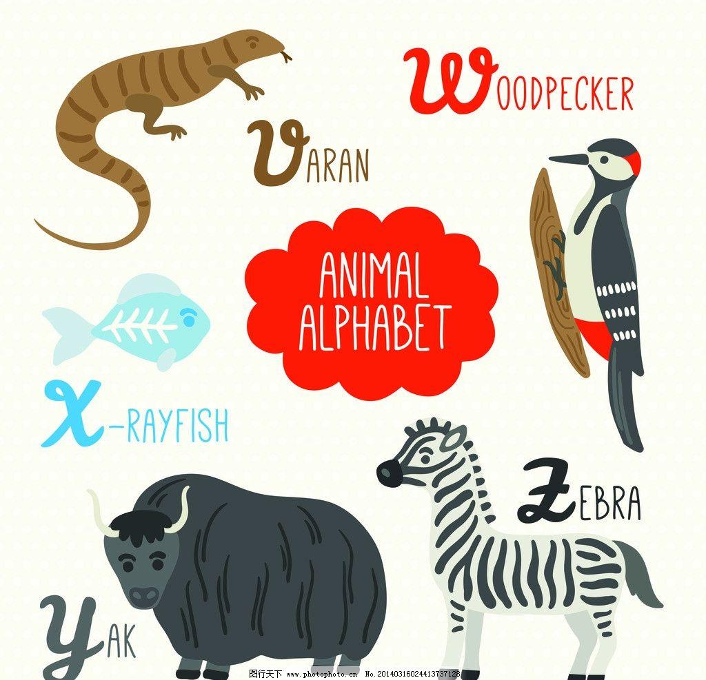 卡通动物 穿山甲 牛 啄木鸟 鱼 斑马 蛇 英文 字母学习 字母表 矢量