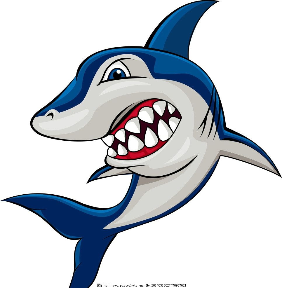 鲨鱼 野生 动物 海洋生物 卡通鲨鱼 手绘 鱼类 鱼 野生动物 生物世界