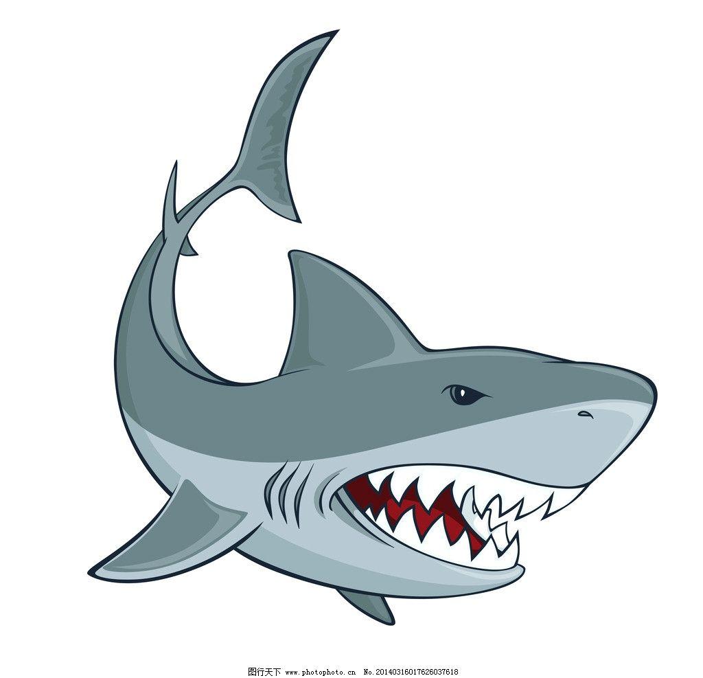 鲨鱼 野生 动物 海洋生物 鱼类 鱼 野生动物 生物世界 矢量 eps