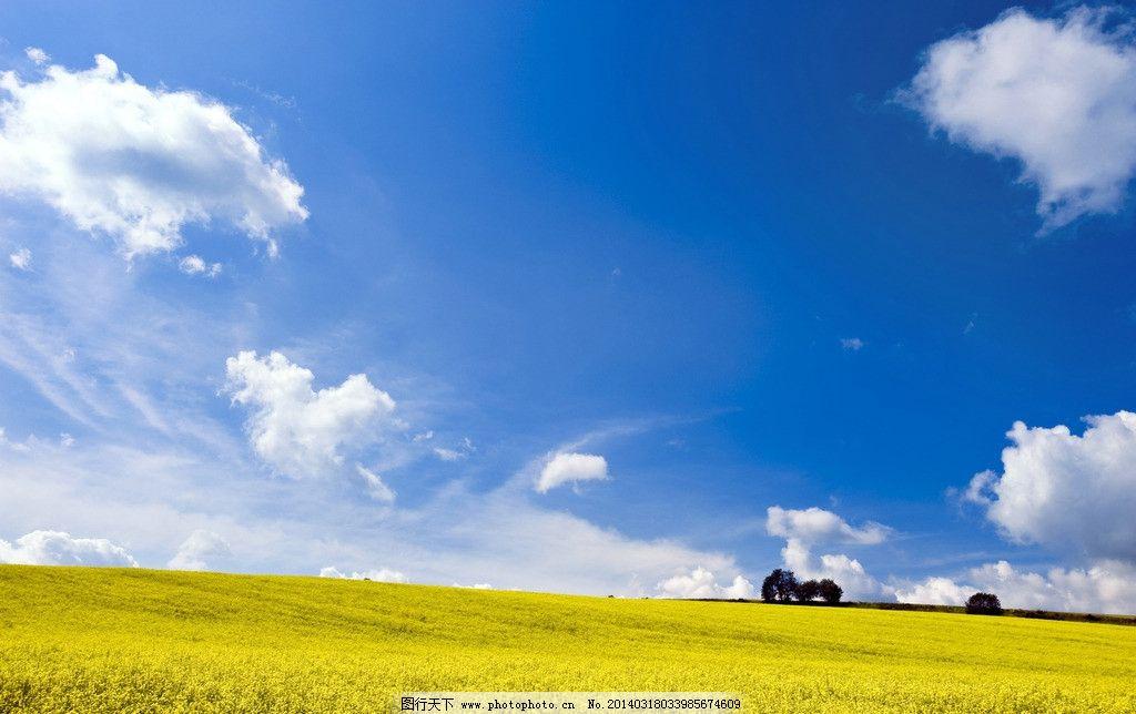 大地 天空 树木 草地 土地 蓝天 国内旅游 旅游摄影