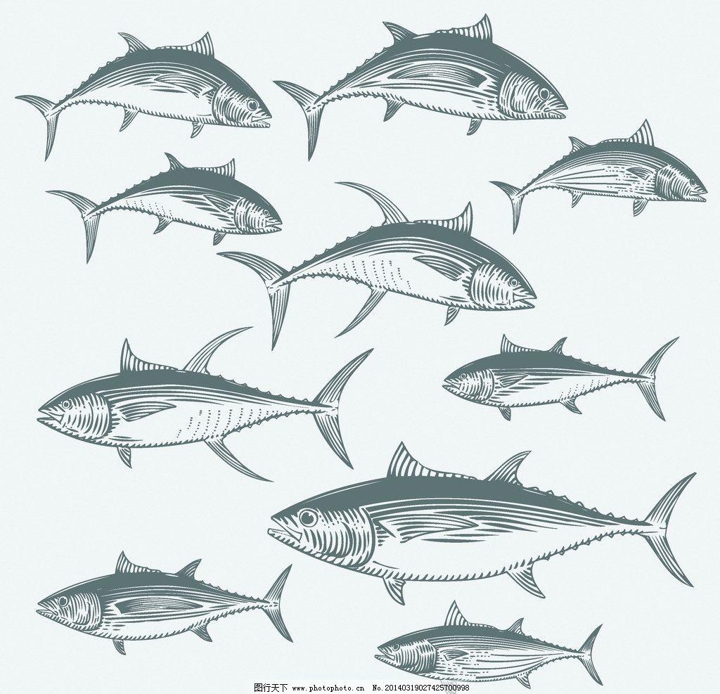 海洋生物 鱼 卡通动物 海鲜 鱼类 卡通 手绘 手绘动物 矢量素材 矢量