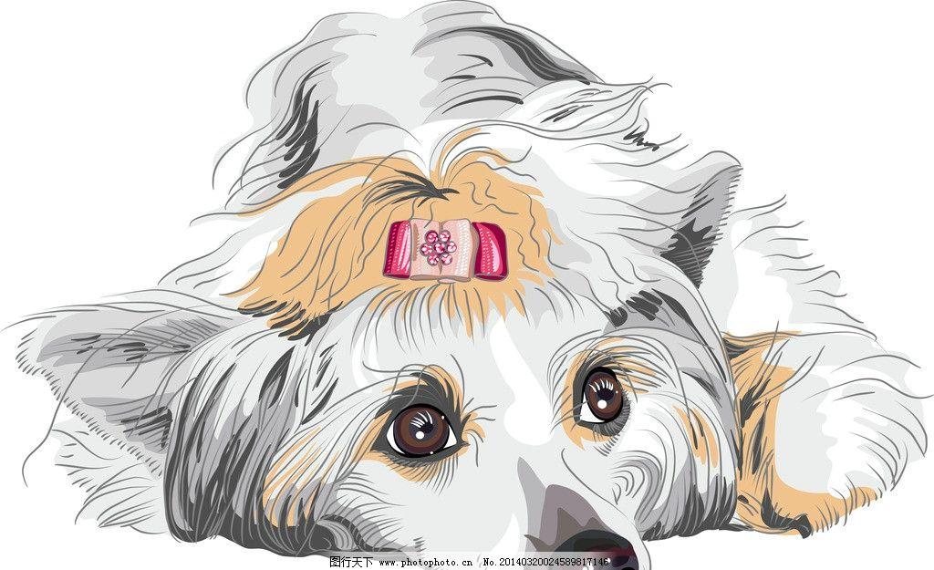 小狗 狗 宠物狗 卡通 宠物