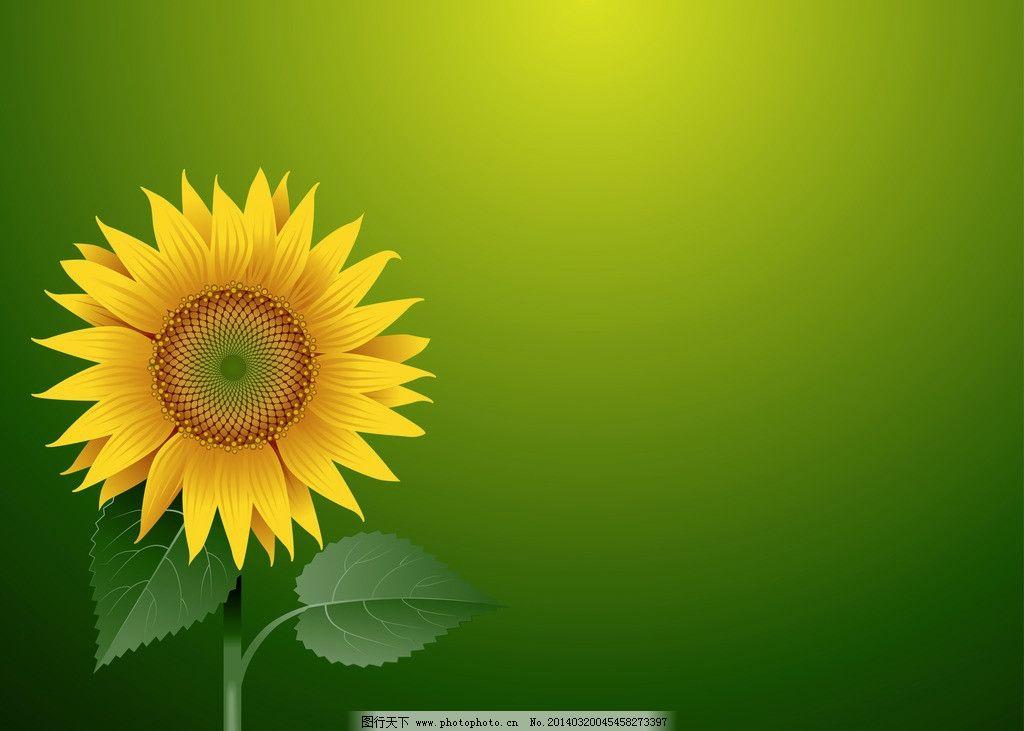 花草 葵花 花卉 手绘 绿叶 春天 矢量 植物主题 生物世界 矢量树木