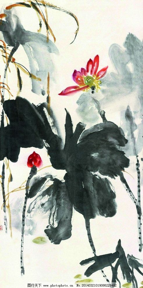 荷花图 美术 中国画 水墨画 荷花 荷花画 国画艺术 绘画书法 文化艺术