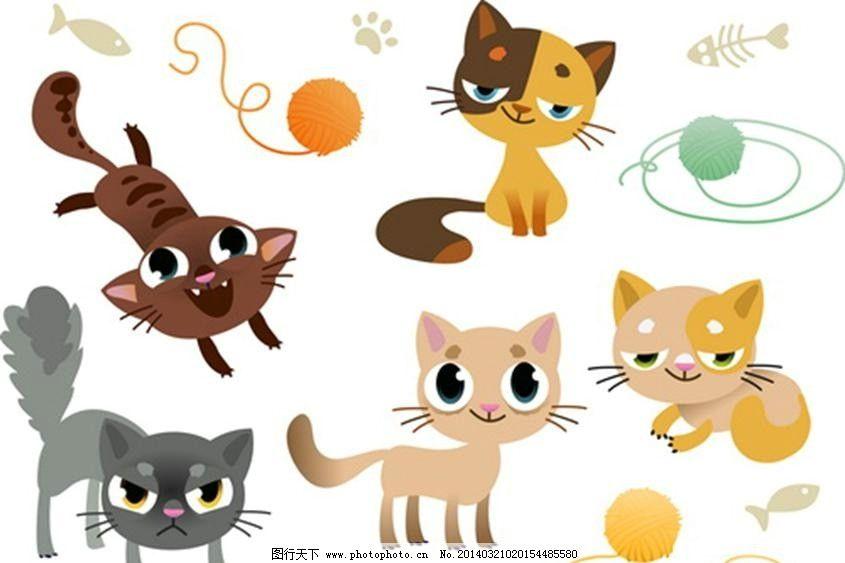 小猫猫咪宠物cat 小猫 猫咪 宠物 宠物猫 cat kitty 可爱小猫 小猫